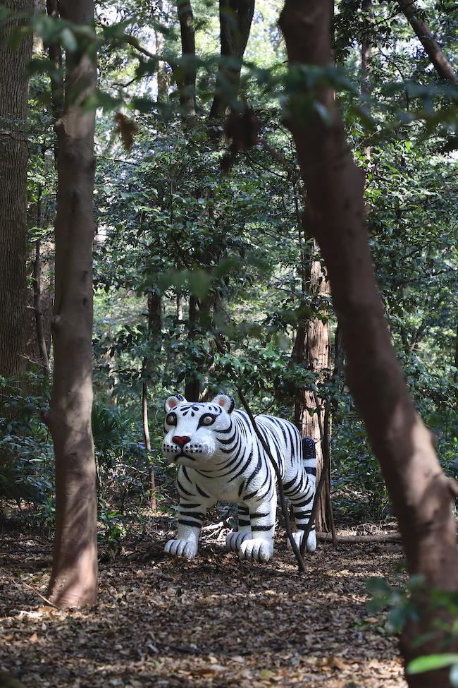 三沢厚彦 『Animal 2012-01B』 (2012/2019年) photo : 木奥惠三