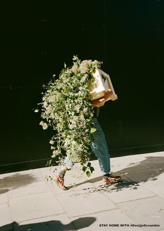 嶌村吉祥丸 『photosynthesis』