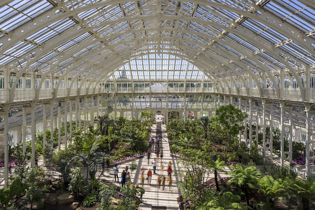5年の歳月をかけて2018年に修復が完了し、1860年の建造当時の美しい姿を取り戻した巨大な温室、テンペレートハウス。使われているガラスの総数はなんと15,000枚。Photo:Gareth Gardner ©RBG Kew
