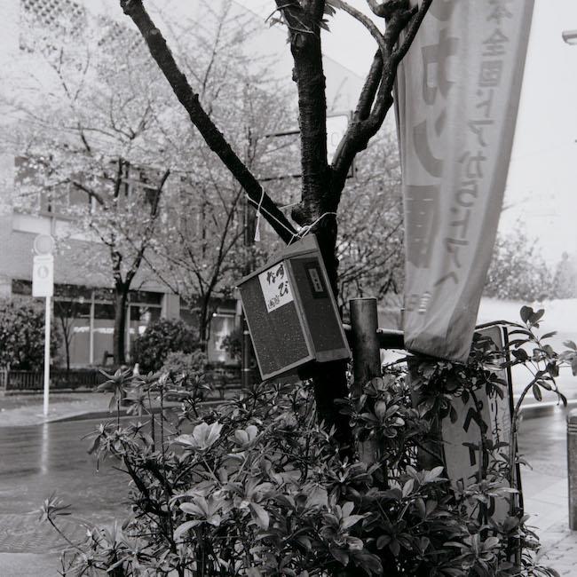 小沢剛『なすび画廊』ミクストメディア, 制作年不明, 撮影 中村政人