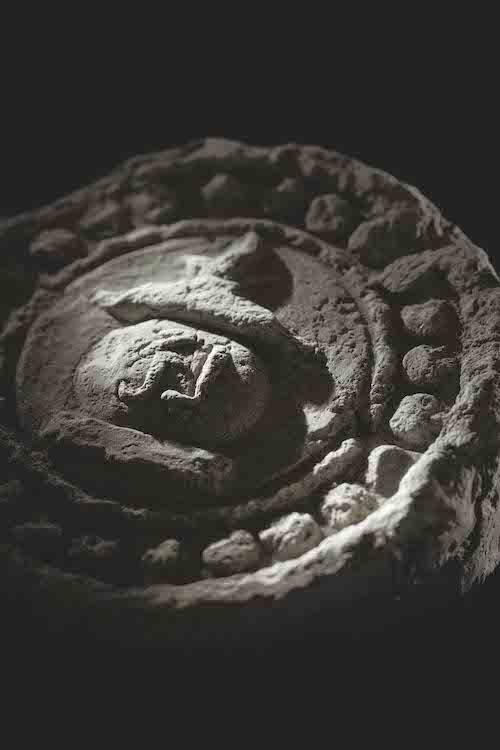 『法勝寺瓦』(平安時代末– 鎌倉時代初期) Photo: Yuji Ono
