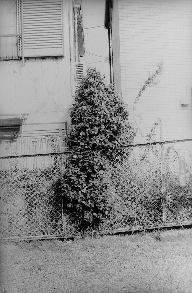 山谷佑介 『2019年2月26日 東京都杉並区』 (2020年)  © the artist, courtesy of Yuka Tsuruno Gallery