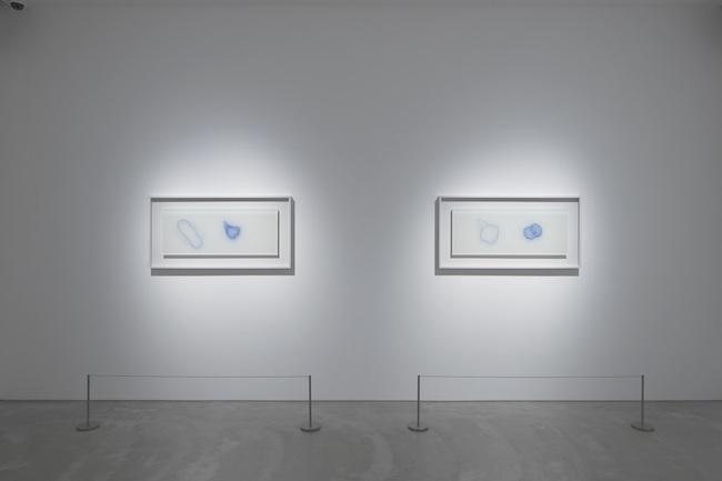 展示風景より、左から『Blue Seed_A』及び『Blue Seed_B』(2020年)。特殊顔料が塗布されたアクリル板にUVレーザーが照射され、植物種子の3Dモデルのシルエットが浮かび上がっていく作品。