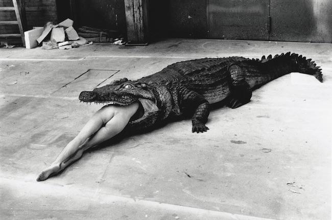 Crocodile, H.Newton, Pina Bauch Ballet, Wuppertal 1983 © Foto Helmut Newton, Helmut Newton Estate Courtesy Helmut Newton Foundation