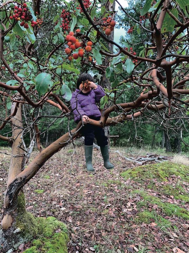 アビュータスの木に座る次男の無邪気さに幸福を感じる。