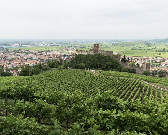 ピエロパンの本拠地は15世紀の古城、パラッツォ プリチ。