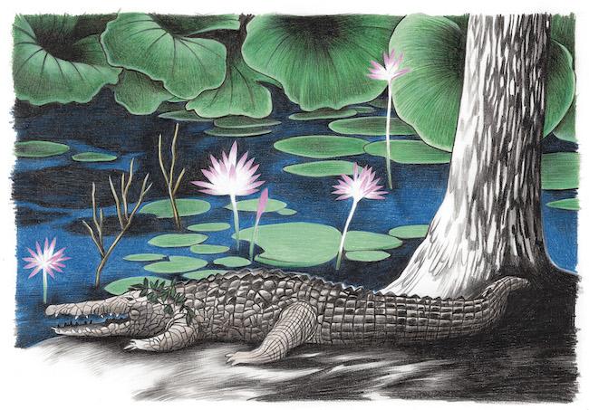 ガブリエラ・ジャンデッリ 『オーストラリア』より。 © Louis Vuitton Malletier