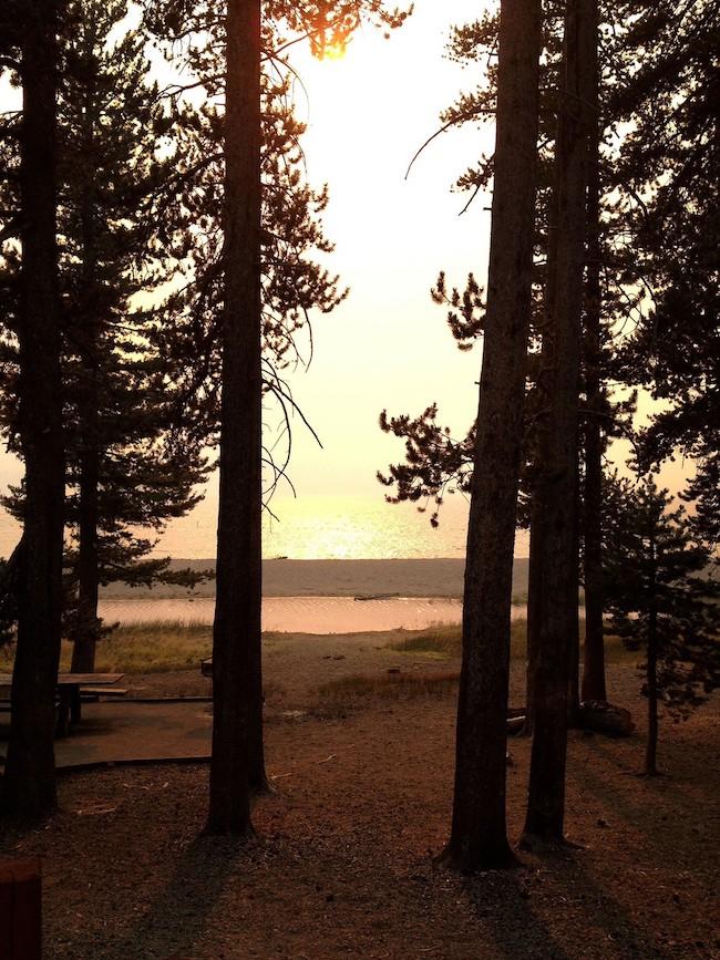 心の治療にも良いとされるメディスンレイク。Shasta/U.S.A「medicine lake between trees」2012 SHASTAより