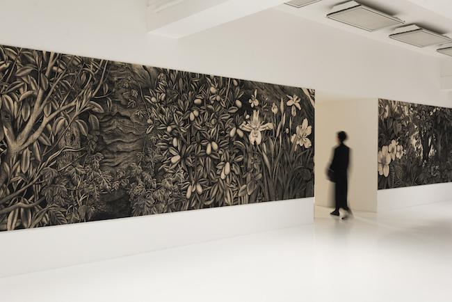 佐藤直樹『そこで生えている。2010〜2020』©佐藤直樹個展「秘境の東京、そこで生えている」2017