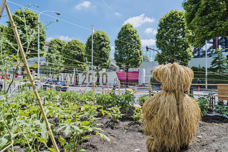 ファブリス・イベール『たねを育てる』(2008年) 展示場所:ビクタースタジオ横の空地 撮影:後藤秀二