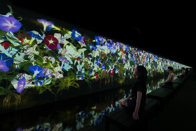 アート浴エリアの作品 『降り注ぐ雨の中で増殖する無量の生命』(2020)
