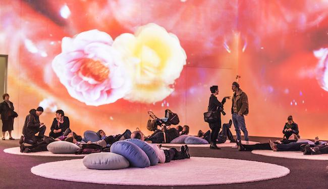 『マーシー・ガーデン・ルトゥー・ルトゥー/慈しみの庭へ帰る』2014年、マルチチャンネル・ヴィデオ・インスタレーション(15分14秒)、クンストハレ・クレムスでの展示風景、2015年、Photo: Lisa Rastl