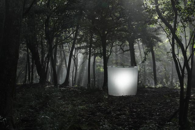 展示風景より。『鳥葬(箱根、日本)』2017-2018年 ポーラ美術館 Photo: Koroda Takeru © Roni Horn